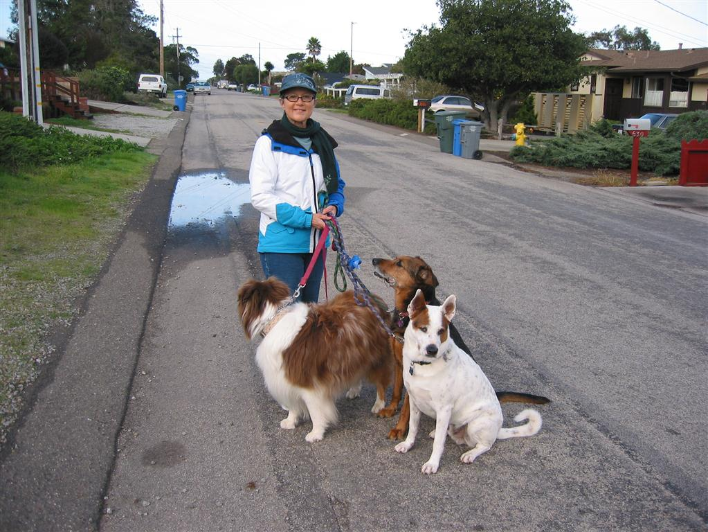 Photo of Dianne with dogs