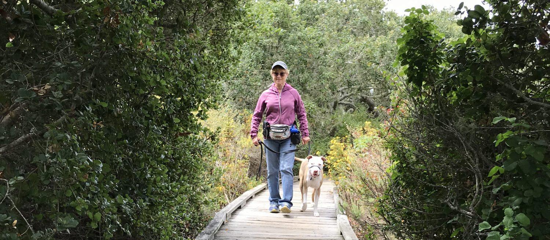 Dianne's Pet Services - Los Osos